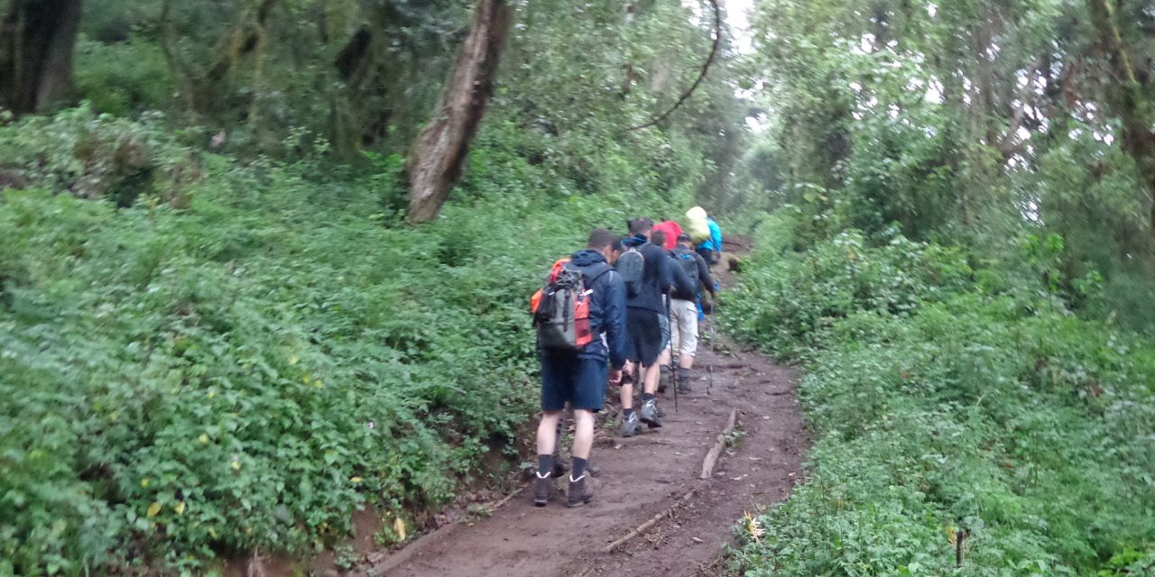 https://www.kilingeadventures.com/wp-content/uploads/2021/01/1-Day-Kilimanjaro-climb-shira-plateau-1280x640.jpg