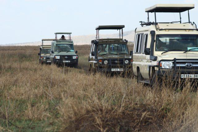 Tanzania safari with children