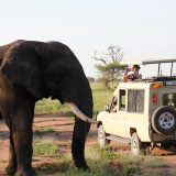 Tanzania Multi-day tours
