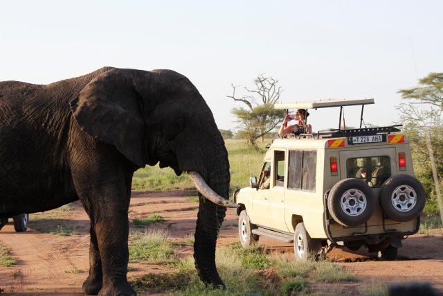 Plan for Tanzania Multi-day Tours
